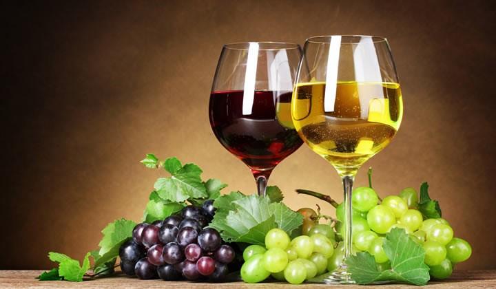 encontro-do-vinho