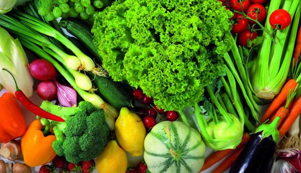 verduras-590x340